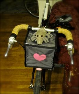 Companion Mite, Companion Bag