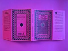 A Vinci, [...], di Morten Søndergaard. Del Vecchio edizioni 2013. Art direction, cover, logo: IFIX. Totale di copertina (part.), 1