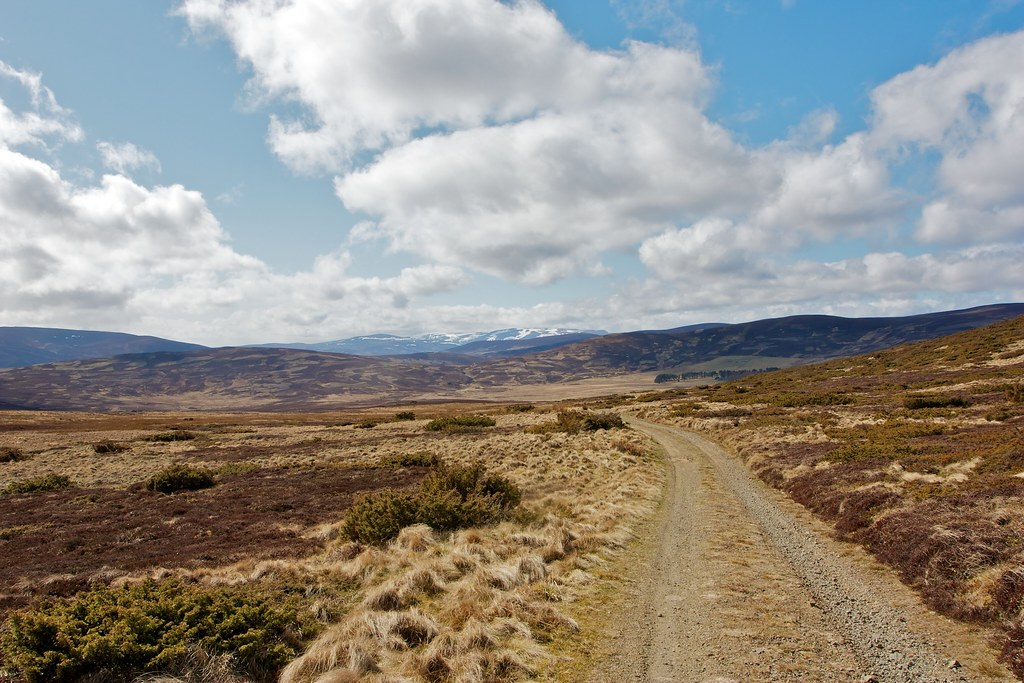 Track to Morven Lodge