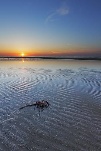 sunset denmark kelp manfrotto 6d landoflight canoneos6d hlandersen uggerbystrand