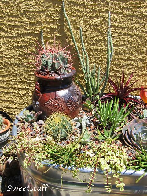 Pot inside Trough