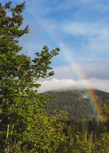 pacificnorthwest rainbow issaquah mountain nature landscape clouds trees scenic canon pnw rain day canoneos5dmarkiii johnwestrock canonef2470mmf28lusm washington
