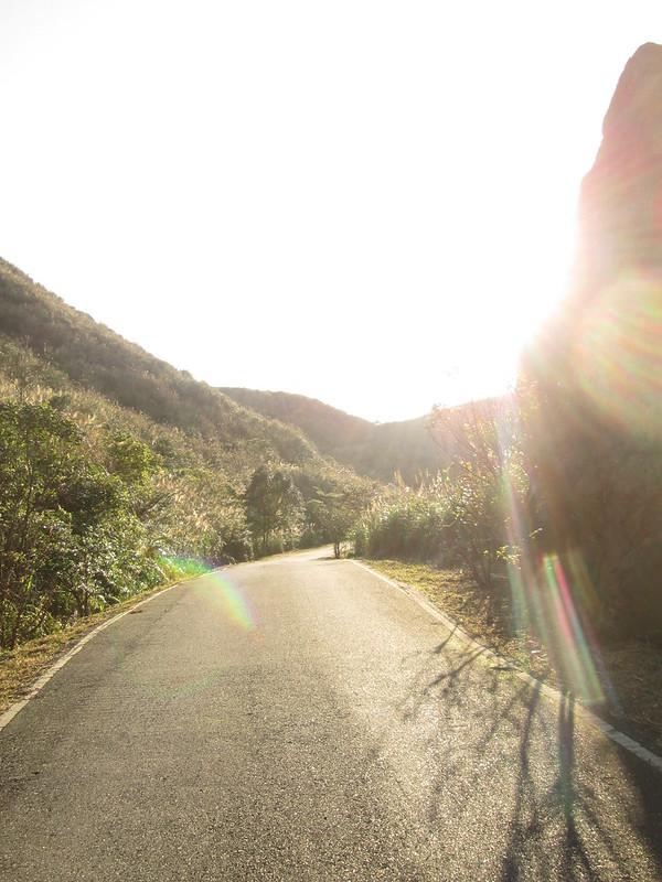 撒滿陽光的道路。