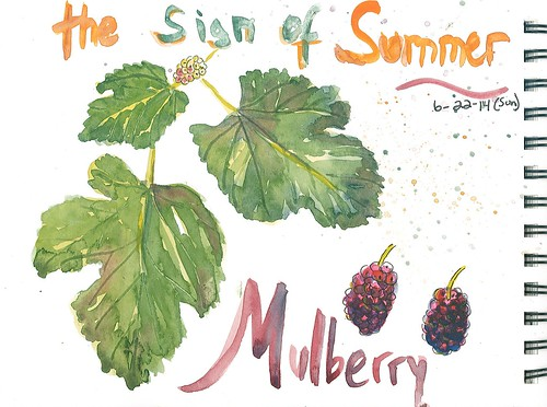 20140622_mulberry