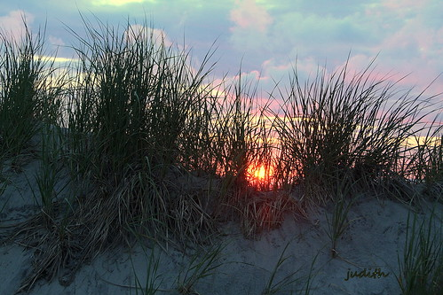 beach nature sunrise newjersey dunes grasses wildwood
