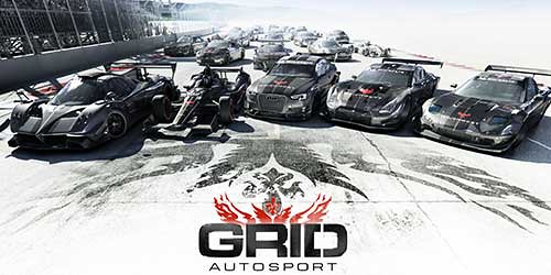 Grid Autosport Wiki Guide