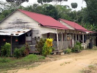 Image of Kampong. district kampong suriname paramaribo commewijne peperpot