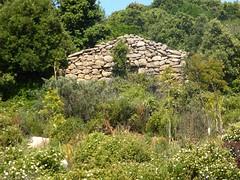 Maisonnette du hameau ruiné de Pastricciola
