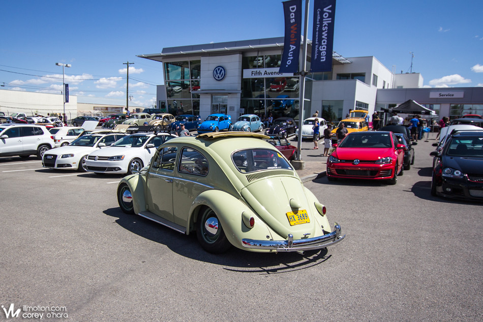 Fifth Avenue Auto Haus Vw Volkswagen Dealer Calgary New