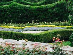 Dallas Arboretum 2014