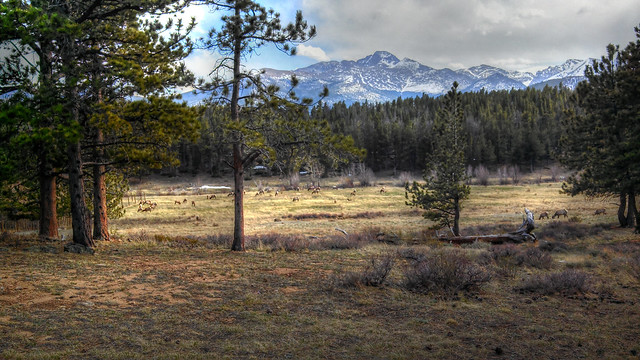 Rocky Mountain National Park Edited Cell Phone Pic