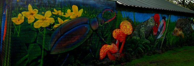Sutton Park Graffiti, by Parmjit Flora