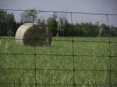 Fence and Hay Bale