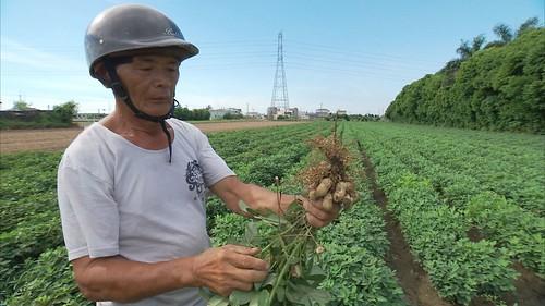 自經區可能從國外進口農產原料