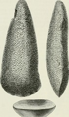 "Image from page 181 of ""The ancient stone implements, weapons, and ornaments, of Great Britain"" (1872)"