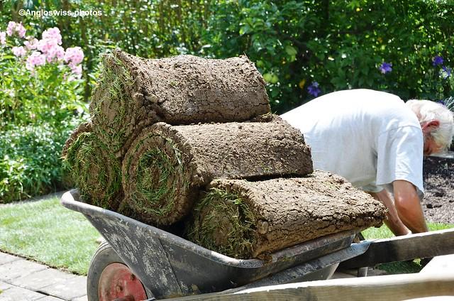 Lawn rolls