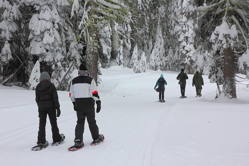 IMG_8469 Ranger-Led Snowshoe Walk