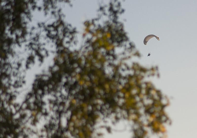 Late Summer Para Gliding