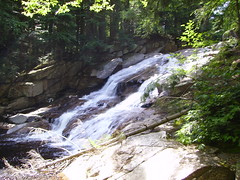 stream, waterfall, rainforest, water feature, water, rapid, river, creek, body of water, watercourse, ravine, state park,