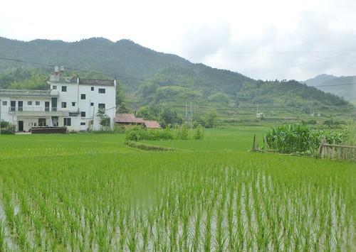 Jiangxi-Wuyuan- Guankeng (11)