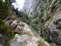 Descente du ravin en V du Purcaraccia : sur le sentier de la RG, les tiges métalliques du franchissement des dalles inclinées