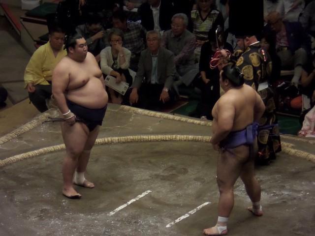 Short Sumo Match 1