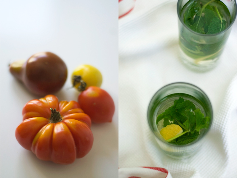 tomate e chá de menta