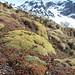 Alpines2, Ushuaia, Argentina