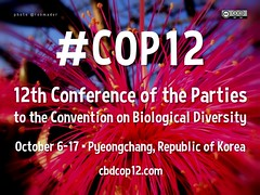 Free Poster! 12th Conference of the Parties to the Convention on Biological Diversity #COP12 @CBDNews @biodivcivsoc @CBDLifeWeb @BiodiversityNew