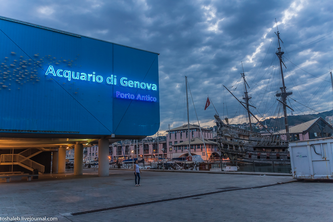 Genova-71