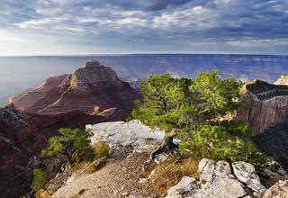 Vishnu's Temple, North Rim, Grand Canyon National Park, Arizona, USA