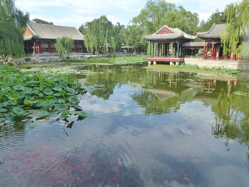 Beijing-Jardin des Plaisirs Harmonieux (3)