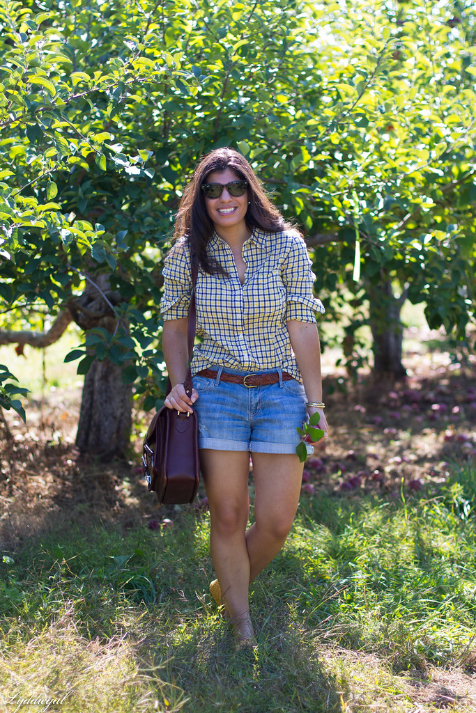 plaid shirt and denim shorts for apple picking-2.jpg