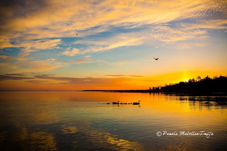 PamelaMcLellanZmija_SunsetSunrise_002-WM