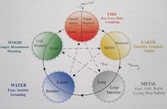 5-Element-Balance