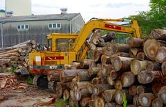 logging, soil, wood, vehicle, construction equipment, bulldozer,