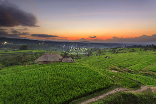bali sunrise indonesia photography tour guide ricefield jatiluwih baliphotography balitravelphotography baliphotographytour baliphotographyguide