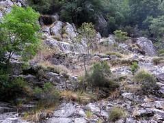 Descente du ravin en V de la  Purcaraccia : en haut du bloc coincé, les soutènements du chemin en RG