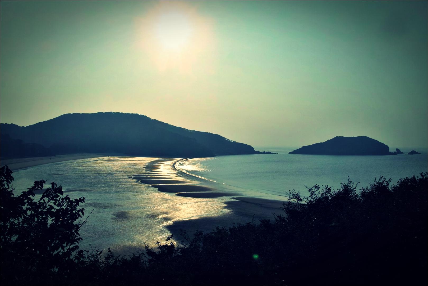 솔밭 해변의 아침-'굴업도 백패킹'
