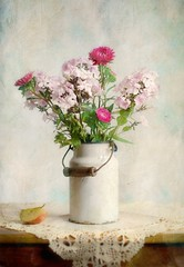 Still Life with Asters and Phlox
