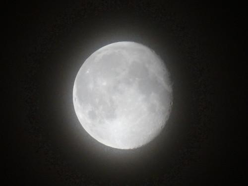 Der Mond erwacht das Herz beklemmt im Nachtwind 0015