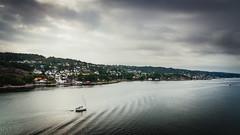 Houses along Oslofjord