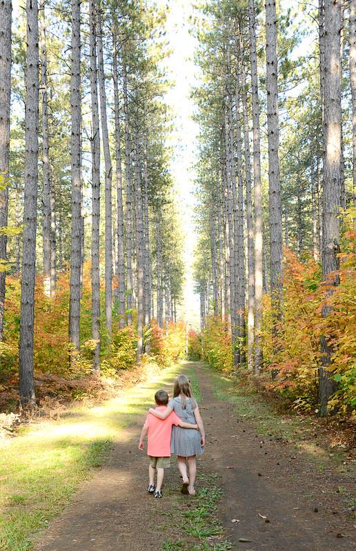 fall2014-5