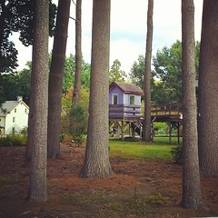 Tree house at Tyler's Aboretum
