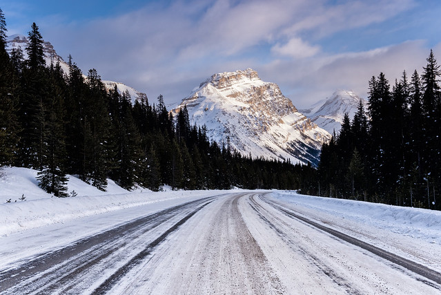 Ice on the Icefields Parkway