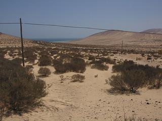 Fuerteventura (Las Palmas de Gran Canaria)