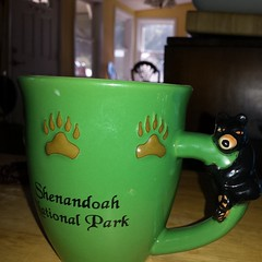 The Bear and I are taking our coffee seriously.