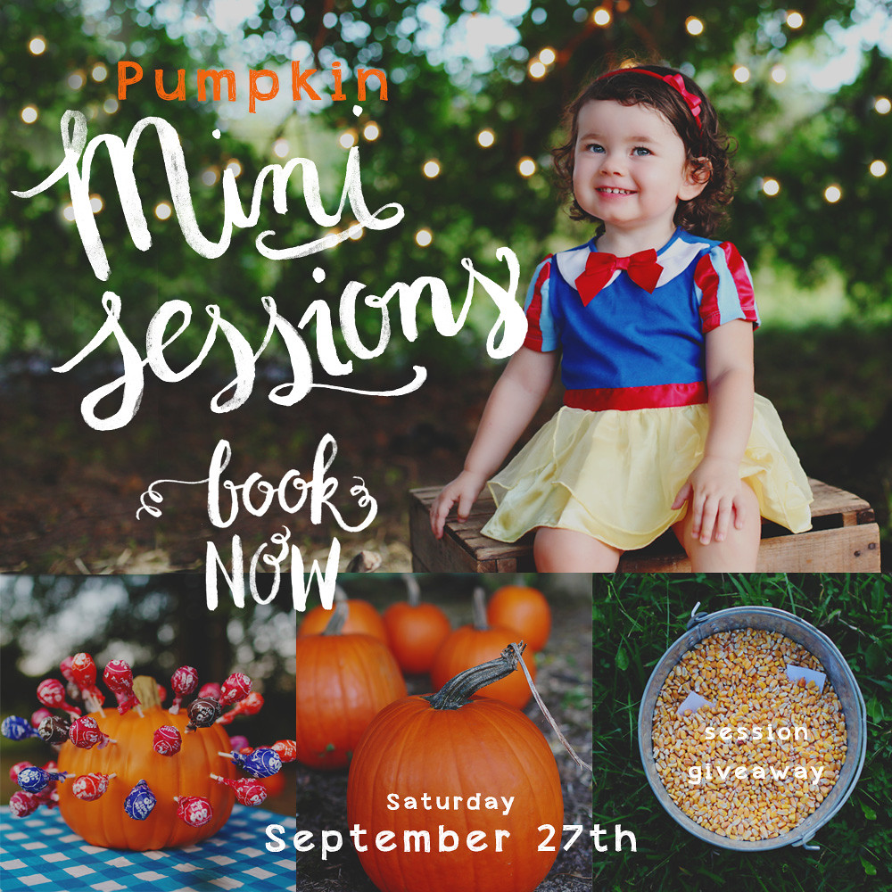 Pumpkin Mini Session Announcement 02