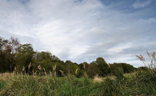 autumn sky fall clouds landscape afternoon mark 28mm hdr västragötaland västergötland 3exposurehdr sjuhärad lekvad