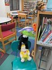 Stuffed Animal Sleepover at CADL Haslett